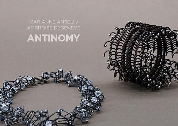 Catalogue Antinomie Ambroise Degenève Marianne Anselin